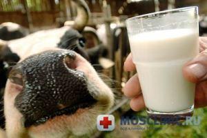 От каких недугов лечит молоко?