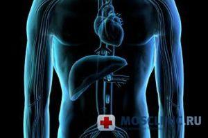 Всё о гепатите С: лечение, симптомы, диагностика