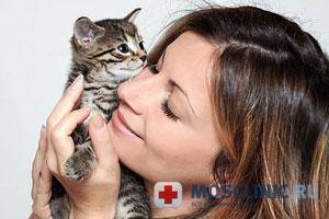 кошки лечат депрессию