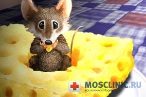 сыр помогает восстановить силы после болезни