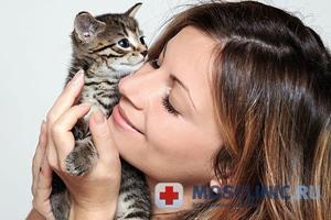 Аллергию на кошек можно вылечить